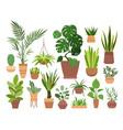plant in pot set cartoon flat vector image vector image