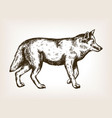 wolf animal engraving vector image vector image