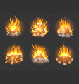 wooden campfire set vector image