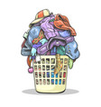 clothes laundry basket vector image vector image
