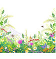 colorful frame with summer meadow plants spider vector image vector image