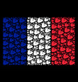 france flag pattern of mouse head items vector image