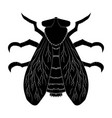 insect silhouettefly musca domestica insect vector image vector image