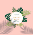 monstera tropical leaves summer sign or logo vector image
