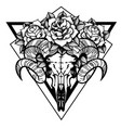 rose tattoo with skull a sheep with sacred vector image