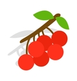 Rowan branch icon isometric 3d style vector image vector image