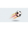 soccer ball on transparent background vector image vector image
