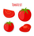 tomato set made in cartoon flat style vector image vector image
