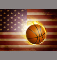 flag of united states with basketball vector image
