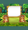 nature view with wooden board blank space vector image vector image
