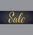sale banner with calligraphic lettering covered vector image vector image