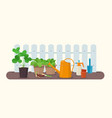 gardening tools and plants in pots vector image