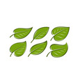 abstract green leaf logo nature symbol or icon vector image vector image