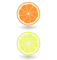 Lemon and orange slice vector image vector image