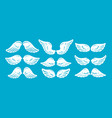 set of hand drawn bird or angel wings of different vector image vector image