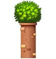 A decorative plant vector image vector image