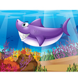 A shark smiling at the bottom of the sea vector image vector image