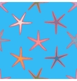 Abstract seamless pattern with hand drawn starfish vector image vector image