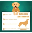 Golden retriever dog banner vector image vector image