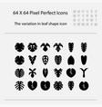 leaves shape intrend treevariegation vector image