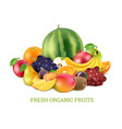 set of various fresh fruits isolate on white vector image vector image