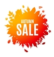 Shiny Autumn Leaves Sale Background vector image vector image