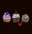 watercolor sketch of chocolate cupcakes vector image