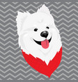 cartoon portrait of a dog in a scarf christmas vector image vector image