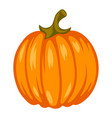 cartoon ripe pumpkin vector image