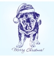 Christmas puppy in Santa stocking hat hand drawn vector image vector image