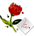 Composition with flower peony vector image vector image