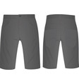 gray shorts vector image