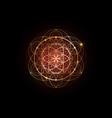 seed life symbol sacred geometry mystic mandala vector image vector image