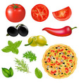 Set Of Products With Pizza vector image vector image