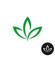 Three green leaf logo Natural plant symbol vector image