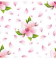Seamless pattern with sakura blossom and petals vector image
