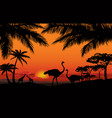 african animal landscape savanna nature sunset