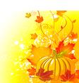 autumn pumpkin background vector image vector image