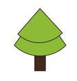 christmas tree pine vector image vector image