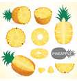 Fruit201509 Set of pineapple in various styles vector image vector image