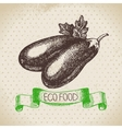 Hand drawn sketch eggplant vegetable Eco food vector image vector image