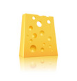 icon of cheese vector image vector image