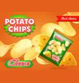 potato chips advertisement cheese flavor vector image