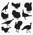turkey silhouettes vector image vector image