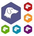 dachshund dog icons set vector image vector image