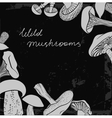 Frame of different hand drawn mushrooms on vector image vector image
