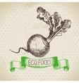 Hand drawn sketch turnip vegetable Eco food vector image vector image