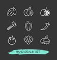set of vitamin icons line style symbols with vector image