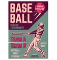 vintage brochure leaflet flyer poster baseball vector image
