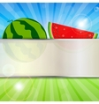 Abstract Natural Summer Background with Watermelon vector image vector image